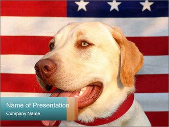 0000071273 PowerPoint Templates - Slide 1