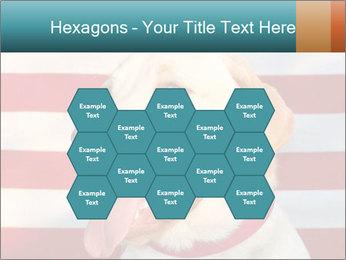 0000071273 PowerPoint Templates - Slide 44