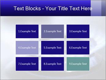 0000071274 PowerPoint Template - Slide 68