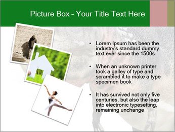 0000071276 PowerPoint Template - Slide 17