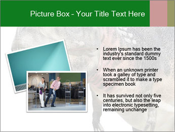 0000071276 PowerPoint Template - Slide 20