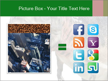 0000071276 PowerPoint Template - Slide 21