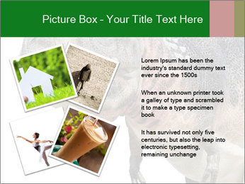 0000071276 PowerPoint Template - Slide 23