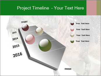 0000071276 PowerPoint Template - Slide 26