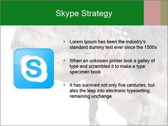 0000071276 PowerPoint Template - Slide 8