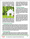 0000071282 Word Template - Page 4