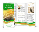 0000071283 Brochure Template