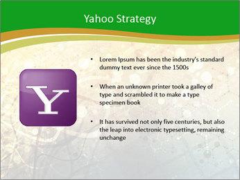 0000071283 PowerPoint Templates - Slide 11