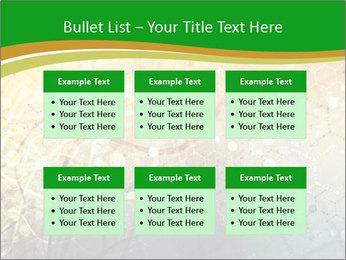 0000071283 PowerPoint Templates - Slide 56