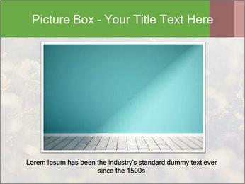 0000071285 PowerPoint Template - Slide 15
