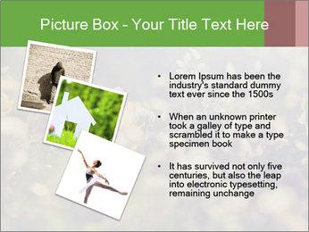 0000071285 PowerPoint Template - Slide 17