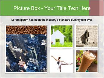 0000071285 PowerPoint Template - Slide 19
