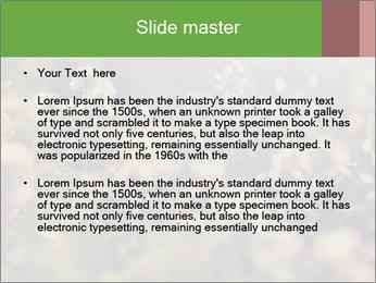 0000071285 PowerPoint Template - Slide 2