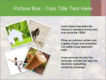 0000071285 PowerPoint Template - Slide 23