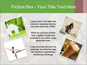 0000071285 PowerPoint Template - Slide 24