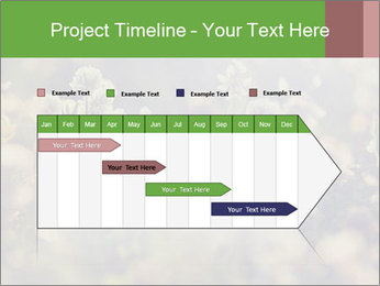 0000071285 PowerPoint Template - Slide 25