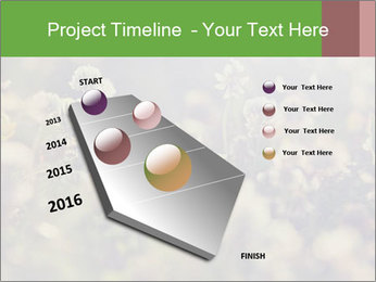 0000071285 PowerPoint Template - Slide 26