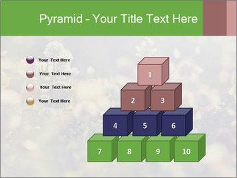 0000071285 PowerPoint Template - Slide 31