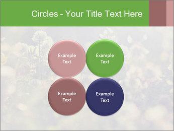 0000071285 PowerPoint Template - Slide 38