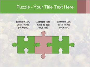 0000071285 PowerPoint Template - Slide 42
