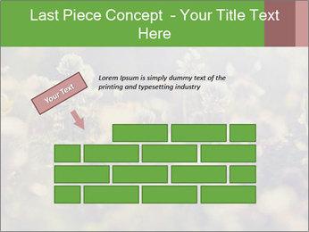 0000071285 PowerPoint Template - Slide 46
