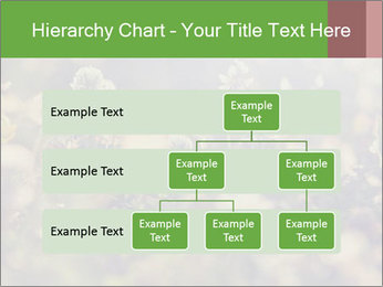 0000071285 PowerPoint Template - Slide 67