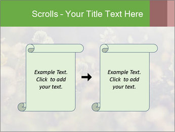 0000071285 PowerPoint Template - Slide 74
