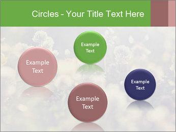 0000071285 PowerPoint Template - Slide 77
