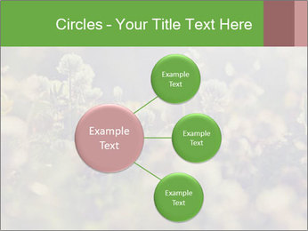 0000071285 PowerPoint Template - Slide 79