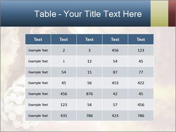 0000071286 PowerPoint Templates - Slide 55