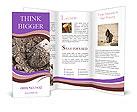 0000071296 Brochure Template