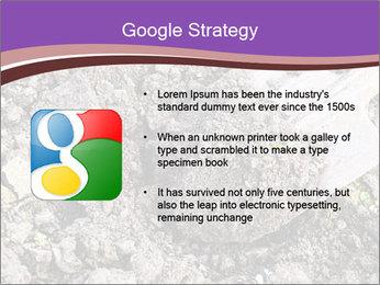 0000071296 PowerPoint Templates - Slide 10