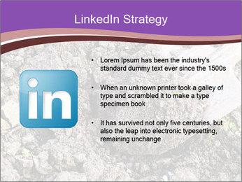 0000071296 PowerPoint Templates - Slide 12