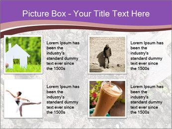 0000071296 PowerPoint Templates - Slide 14