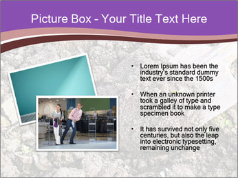 0000071296 PowerPoint Template - Slide 20