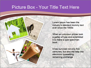 0000071296 PowerPoint Template - Slide 23