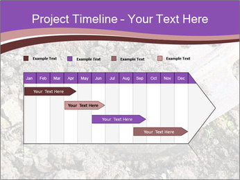 0000071296 PowerPoint Templates - Slide 25