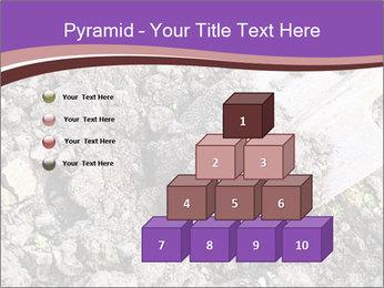 0000071296 PowerPoint Templates - Slide 31