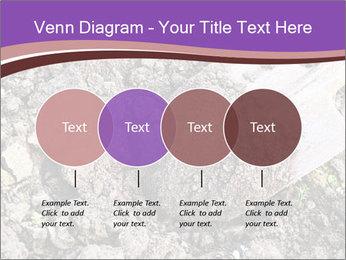 0000071296 PowerPoint Templates - Slide 32