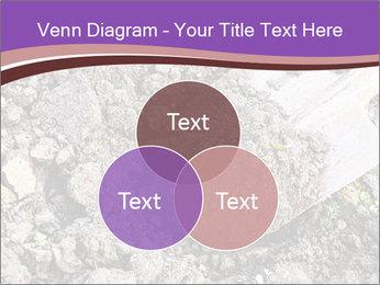 0000071296 PowerPoint Templates - Slide 33