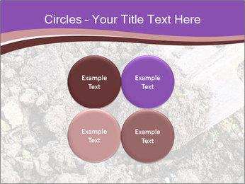 0000071296 PowerPoint Templates - Slide 38