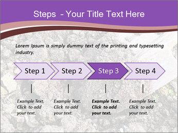 0000071296 PowerPoint Templates - Slide 4
