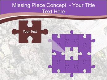 0000071296 PowerPoint Templates - Slide 45