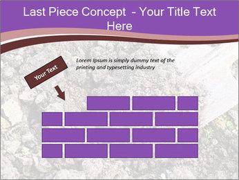 0000071296 PowerPoint Templates - Slide 46