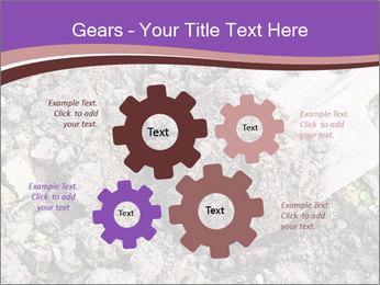 0000071296 PowerPoint Templates - Slide 47