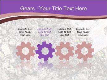 0000071296 PowerPoint Templates - Slide 48