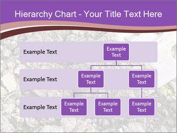 0000071296 PowerPoint Templates - Slide 67