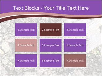 0000071296 PowerPoint Templates - Slide 68