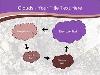 0000071296 PowerPoint Templates - Slide 72