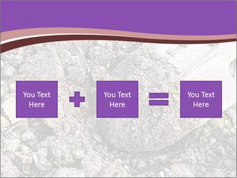0000071296 PowerPoint Templates - Slide 95